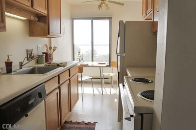 Diplomat Apartments: On Lake Monona - 1 Bedroom Lakeview
