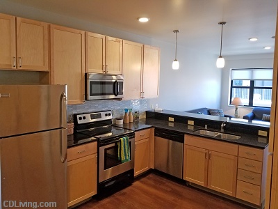 RH Squared - 2 Bedroom Granite Counters & Stainless Steel Appliances  #908
